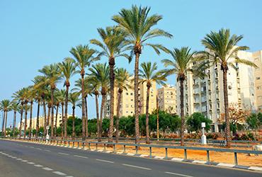 5 השכונות המבוקשות בישראל