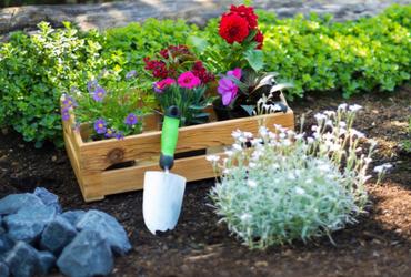 גינה לי חביבה: איך מכינים את הגינה הביתית לקראת הקיץ?