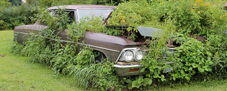 ניס כך תוכלו להרוויח מהמכונית המושבתת שלכם - מגזין יד2 KQ-44